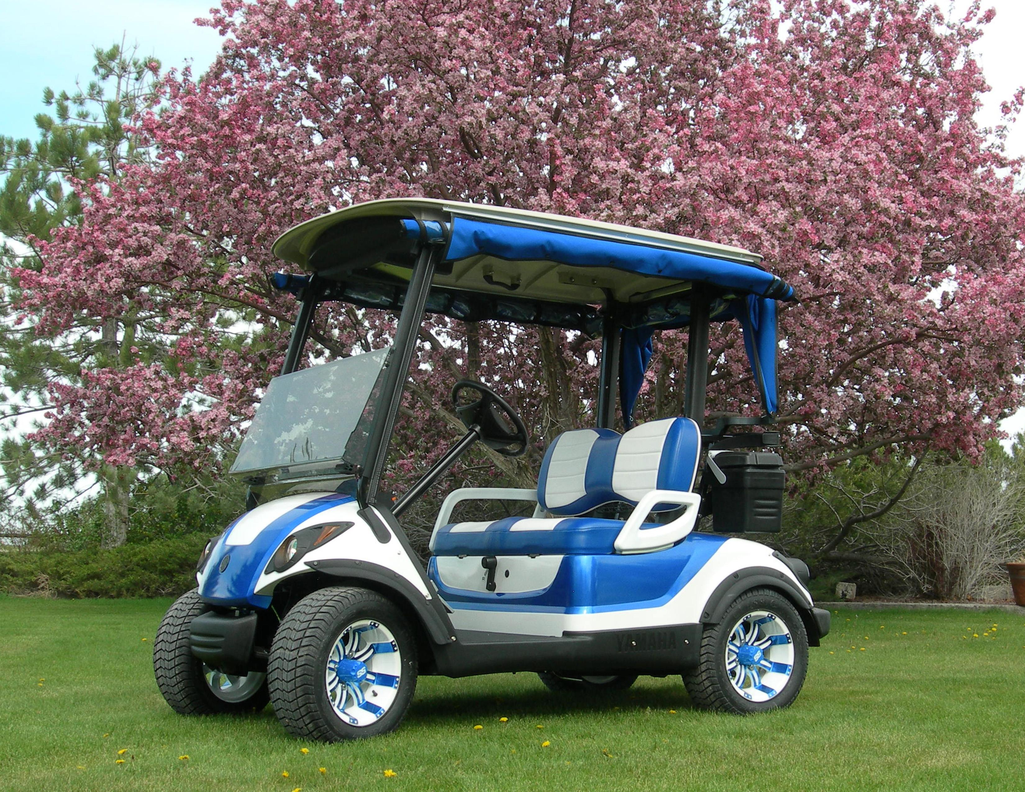 Big Sky Golf Cars Best of Show-Lexus Blue and White 1 – Golf Car Big Golf Cart on big golf discounts, big excavators, big dog cart, big storage, dough boyz custom carts, big max golf, big golf mats, two seater carts,